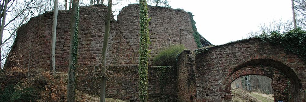 Ochs am Spieß auf Burg Wildenstein