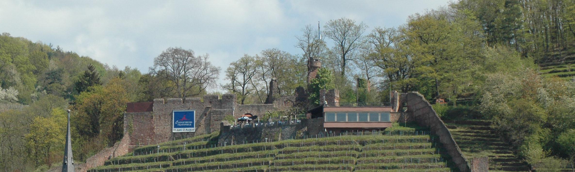 Frühling in der Burglandschaft