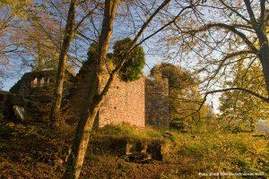 Die Mauern der Vorderburg leuchten im Sonnenuntergang am Neckarknie.